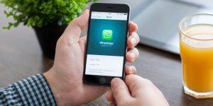 WhatsApp Business é lançado e traz recursos importantes para lojistas