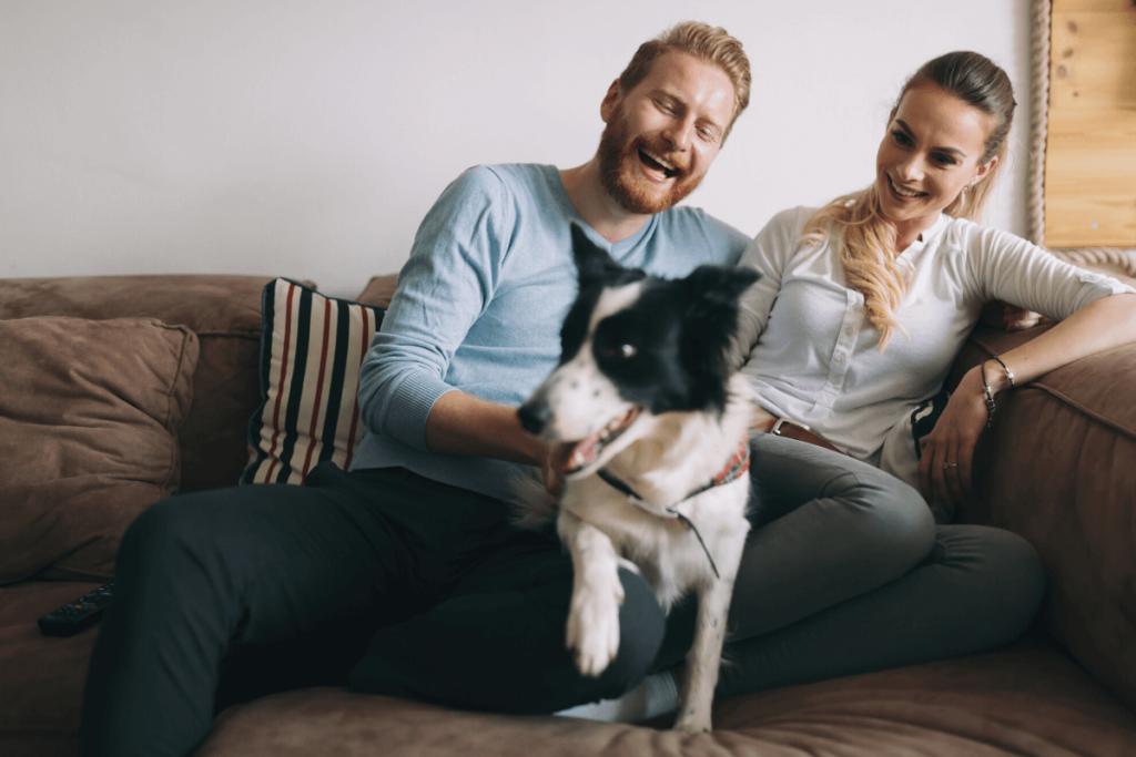 casal com cachorro para representar o mercado pet