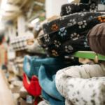 Ecommerce de Petshop: Tudo o que Você Precisa Saber Para Empreender na Área